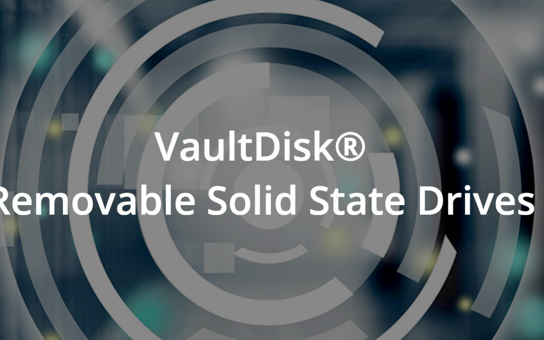 Vaultdisk Removable Secure SSD Drives